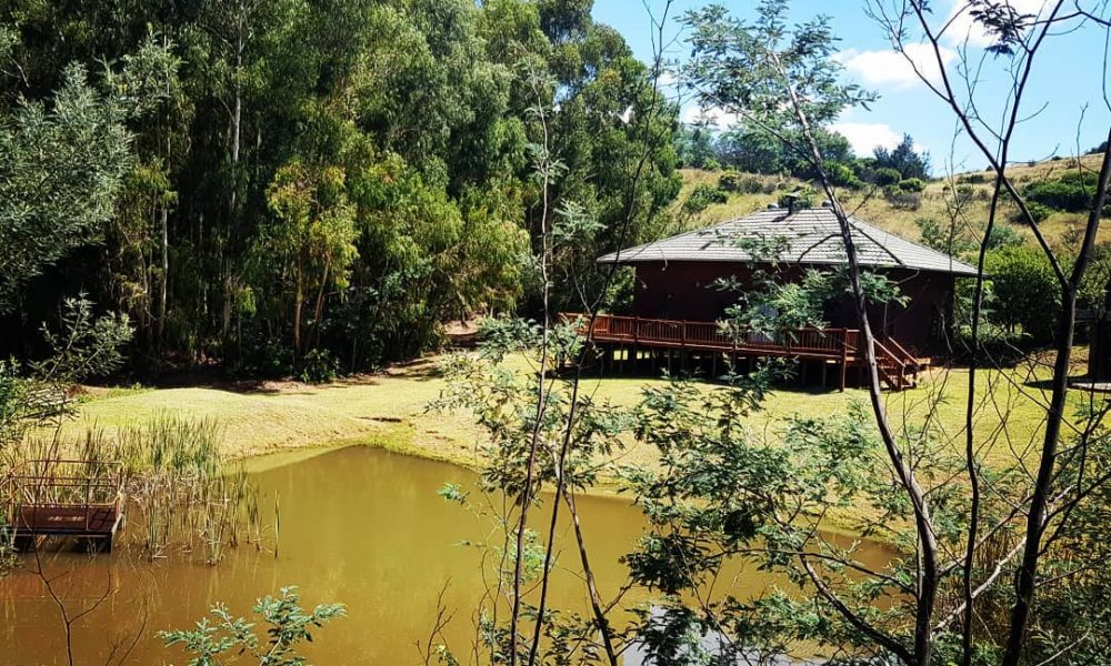 Ncwala Lodge 22