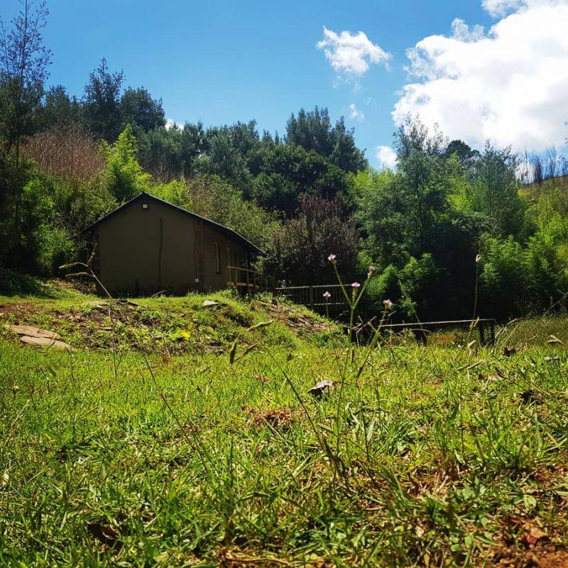 Ncwala Lodge 23